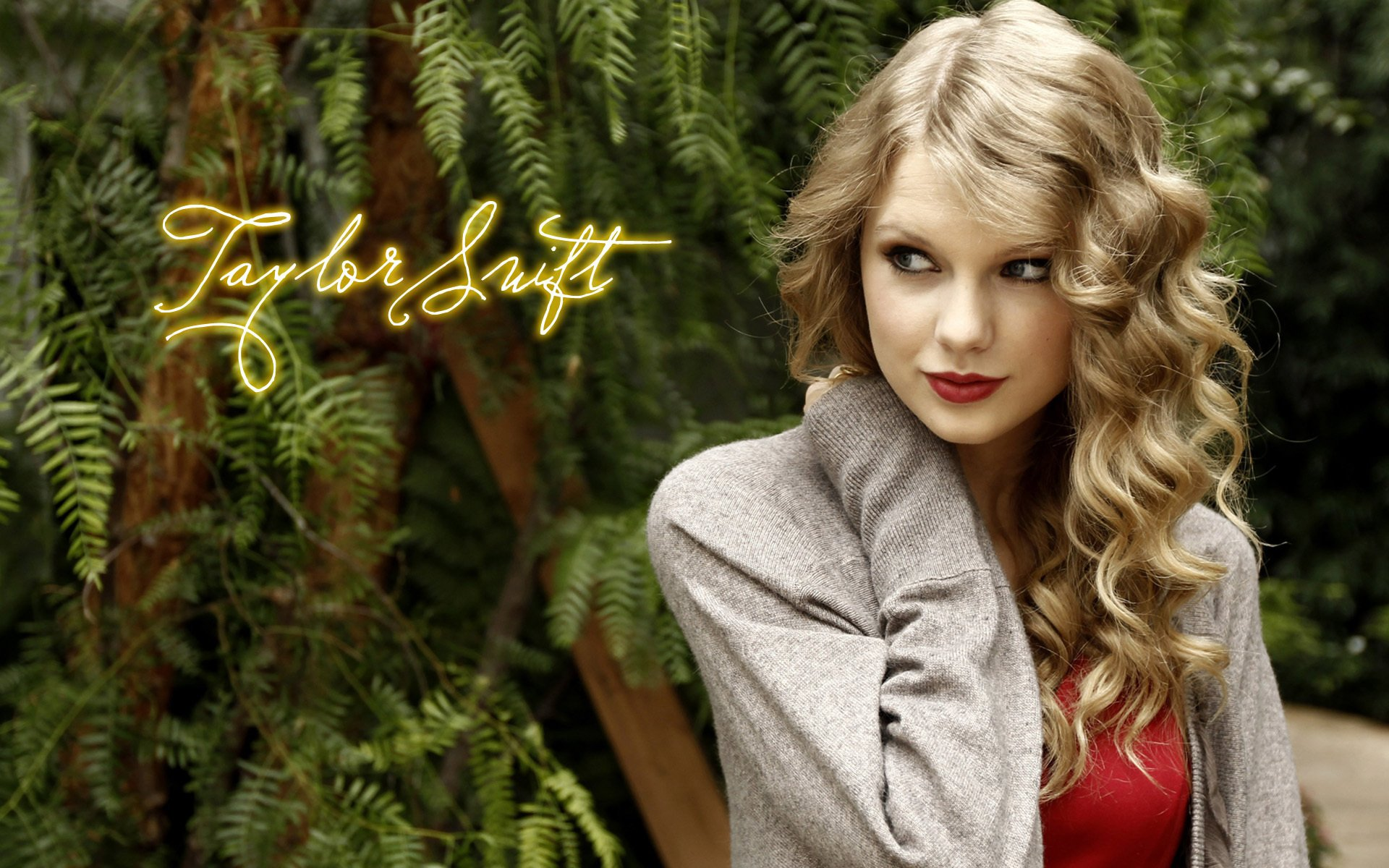 Taylor Swift_background