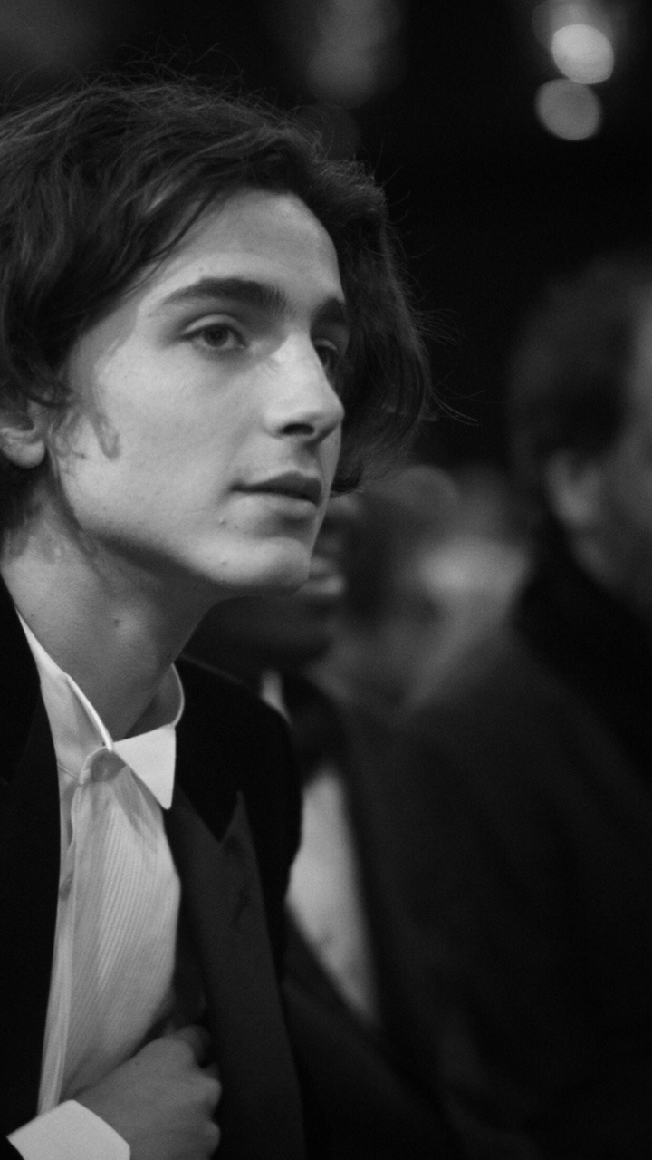 Timothee Chalamet_a rainy day in new york