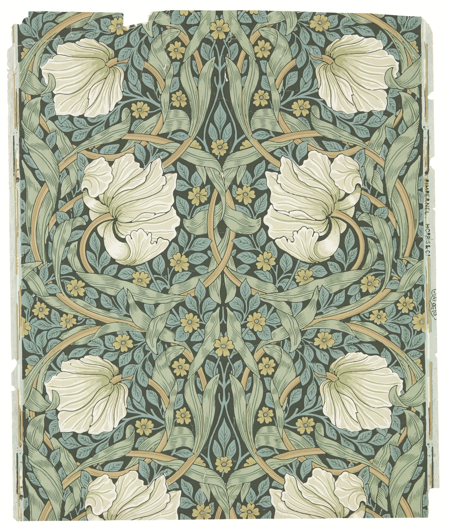 william morris_peacock