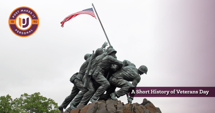 veterans day_marine